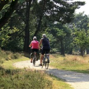 03-fietsen-hulsbeek