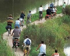 fietsen_natuur