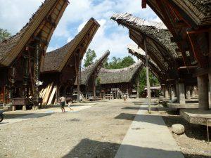 Reisverslag: Sulawesie